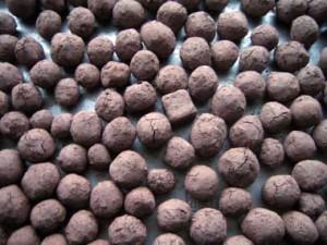 seedballs