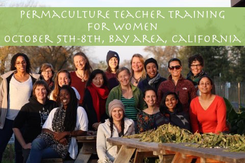 Permaculture Teacher Training for Women | Berkeley, CA