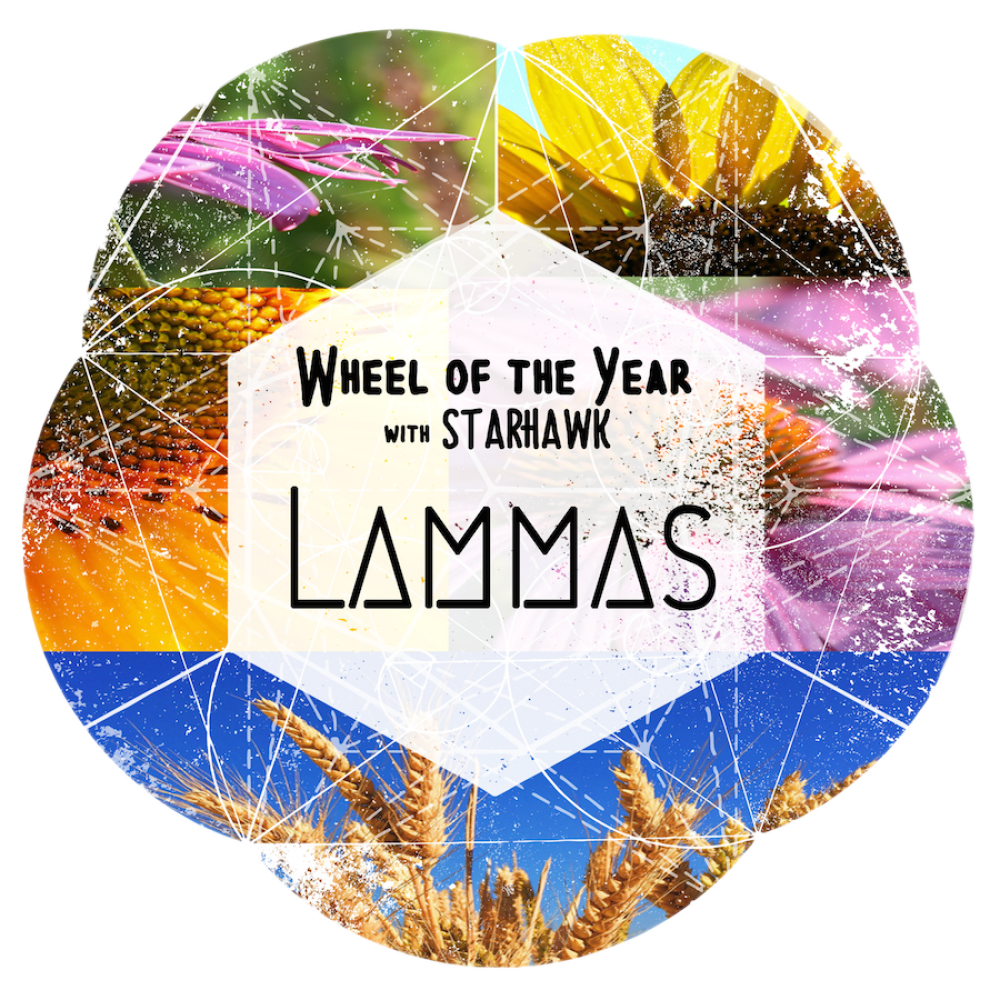 lammas-trans-small